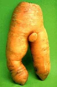 Морковный прикол.