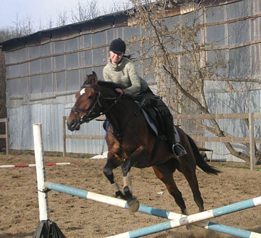 "конно-спортивная школа ""Амадей"""